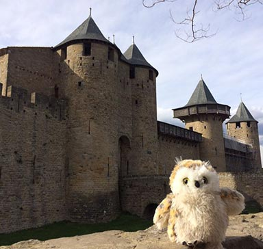 Mossy the owl in front of a castle in France